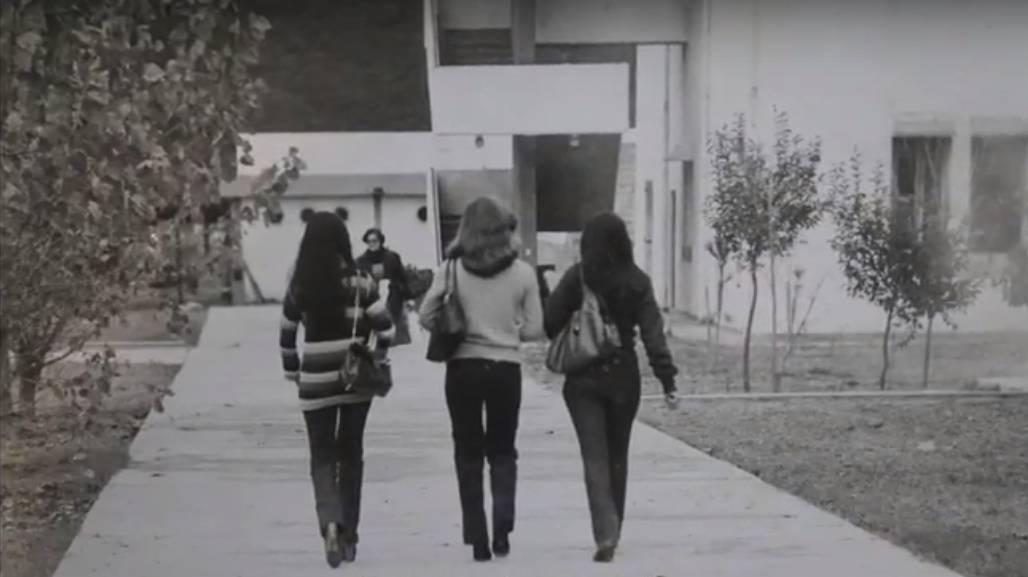 UNSa 1981