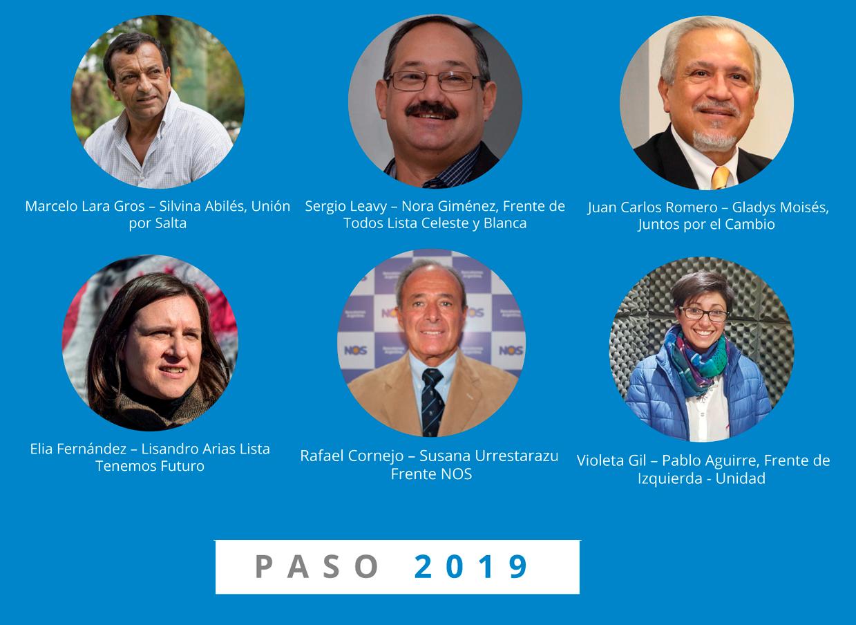 senadores 2019