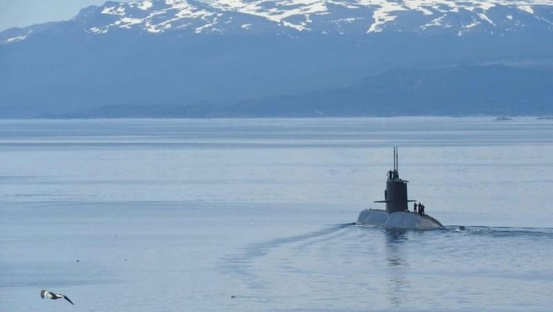 submarino 5