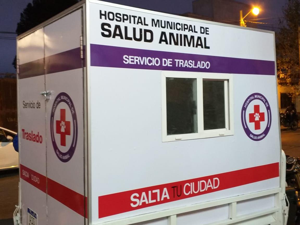 hospital de mascotas