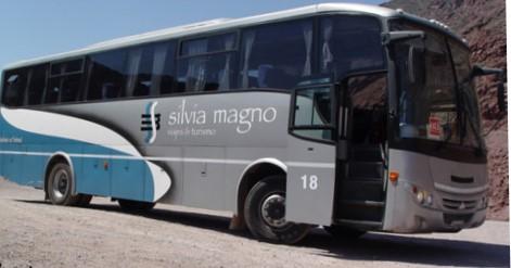 Silvia magno