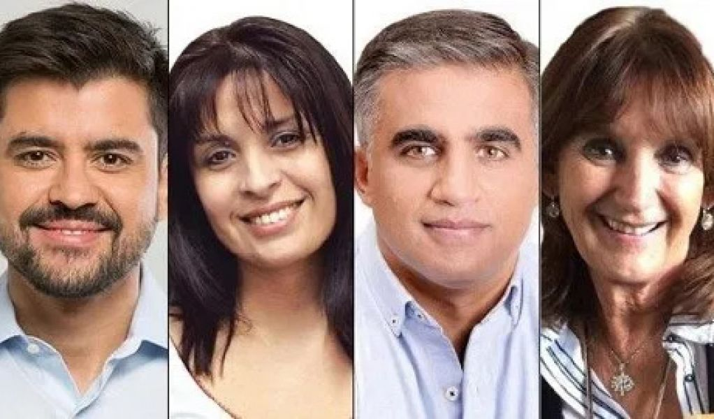 diputados nacionales salta 2019